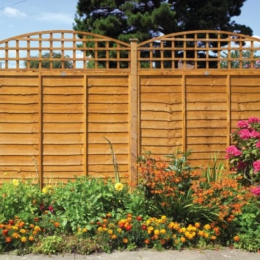 Dome Top Trellis Golden Brown
