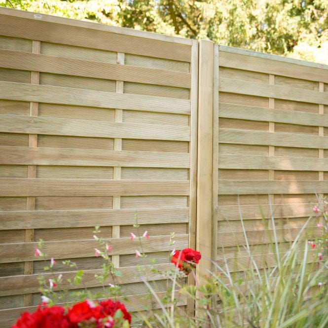 Europa Plain Screen Available In 4 Sizes