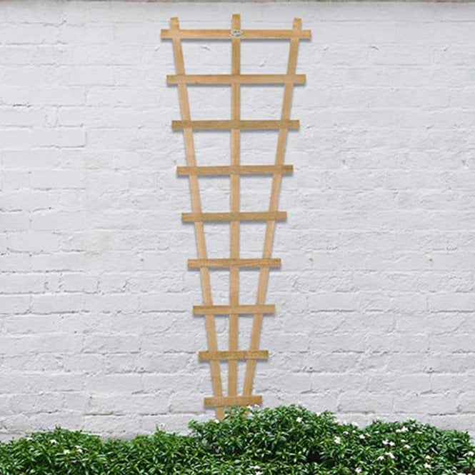 Click to view product details and reviews for Forest Garden Malvern Fan Trellis 183 X 66cm.