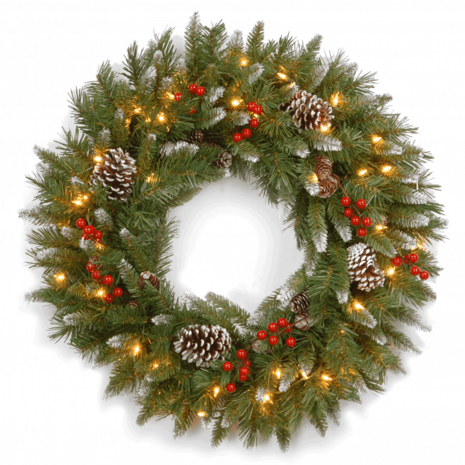 Click to view product details and reviews for Frosted Berry 20 Wreath With Lights.