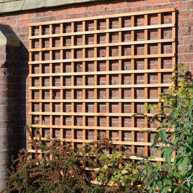 Click to view product details and reviews for Heavy Duty Square Trellis Golden.