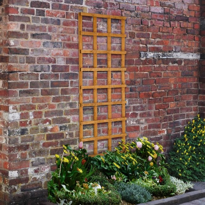 Click to view product details and reviews for Heavy Duty Trellis 4 Sizes.