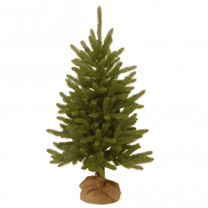 Click to view product details and reviews for Kensington Fir 3ft Tree With Burlap Bag.