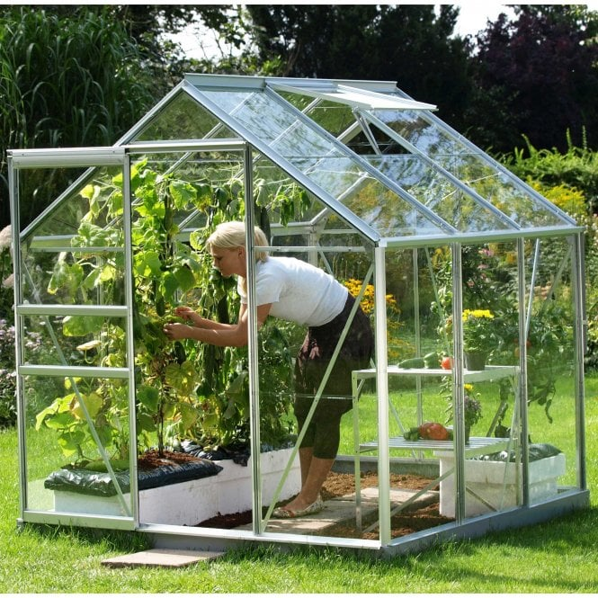 Click to view product details and reviews for Venus 3800 6 X 6 Greenhouse Silver.
