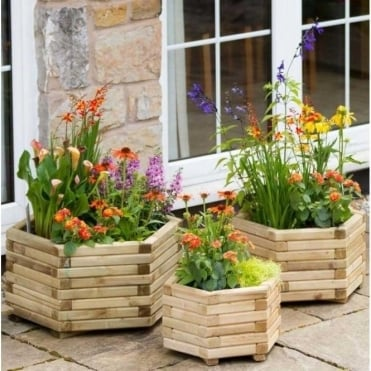 Zest Marford Hexagonal Planter Set